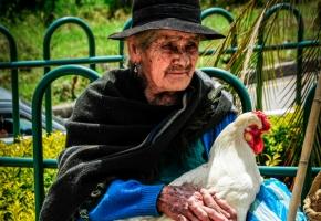 Habli Babli Ekwador
