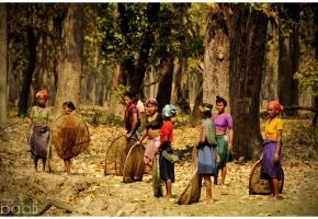 Nepal_Las_9