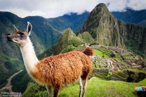 Habli Babli Machu Picchu