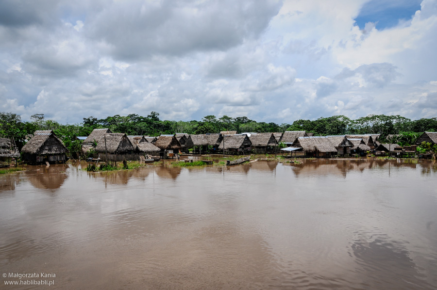 Habli_Babli_Amazonia